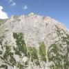 Ecologizare in zona Valea Alba si Valea Morarului