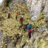 Initiere in alpinism I