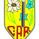Adunarea Generala C.A.R. – 10 aprilie, Busteni