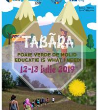 Tabăra de vară pentru copii ''Foaie verde de molid, educatie is what I need''